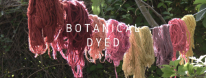 Botanical dyed yarns